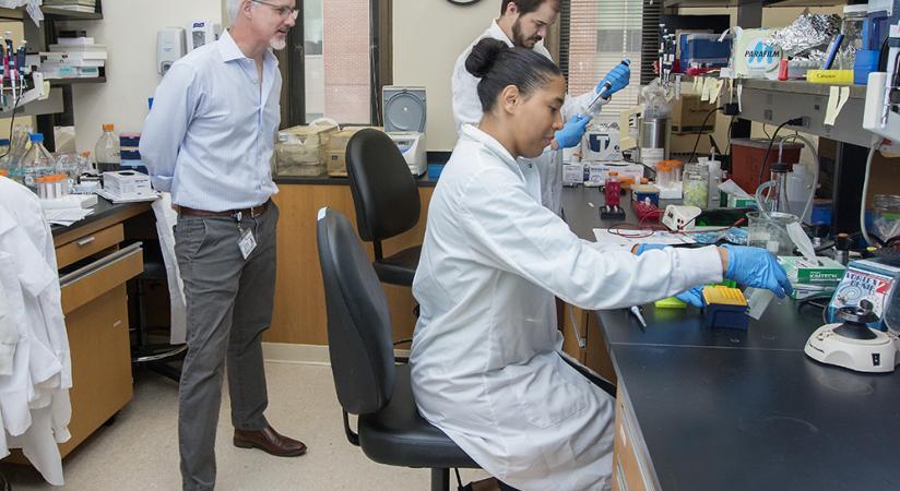 Chris Cowan lab at work